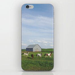 Farm Horses iPhone Skin