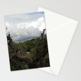 Countryside Hills Landscape with Olive Tree Stationery Cards