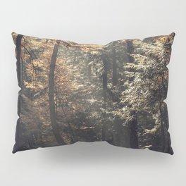 Autumn light and rays - horizontal Pillow Sham
