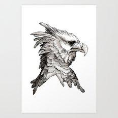Hawk profile  Art Print