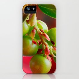 Green Berries Red Background #decor #society6 #buyart iPhone Case