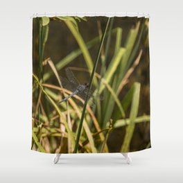 Dragonfly in the marsh Shower Curtain
