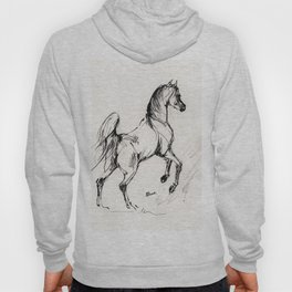 Jumping arabian horse Hoody