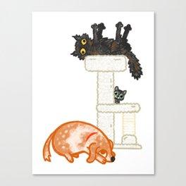 Kitty, Baby, & Rufus Canvas Print
