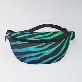 Ripped SpaceTime Stripes - Rainbow PBCGY Fanny Pack