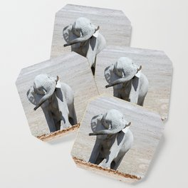 NAMIBIA ... Elephant fun I Coaster
