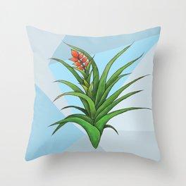 Geometric Air Plant Throw Pillow