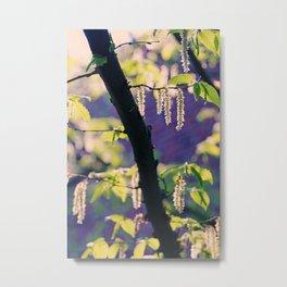 Spring Impression1 Metal Print