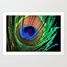 In the Peacock Mood Art Print