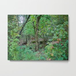 Stag in the Woods Metal Print