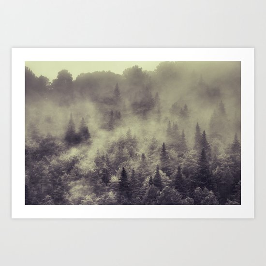 """""""Into the woods"""" Love the forests Art Print"""