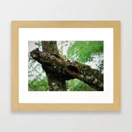 The Scars of Your Love Framed Art Print