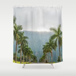Hawaii Palm Tree Road In Fog Shower Curtain