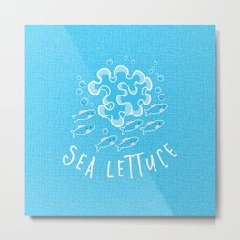Sea Lettuce Metal Print