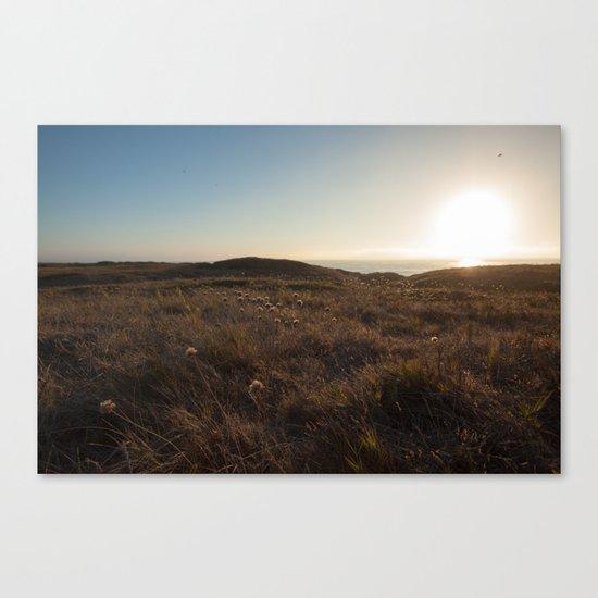 Sunset field Canvas Print