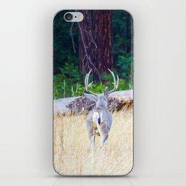 Buck deer in Yosemite iPhone Skin