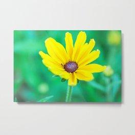 May Flowers Metal Print