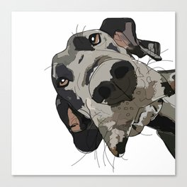 Great Dane dog in your face Canvas Print
