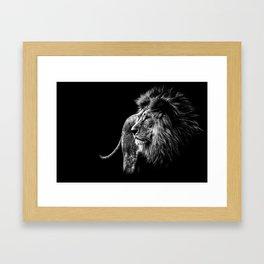 Lion Portrait in black and white Framed Art Print