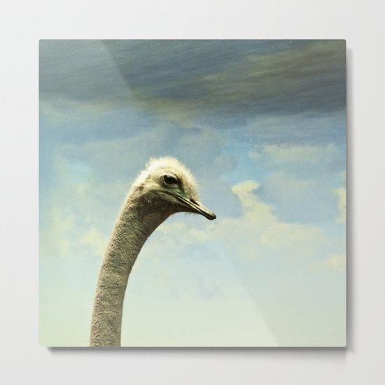 Hello, said the Ostrich Metal Print