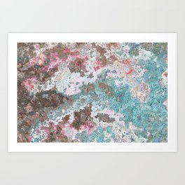 Marble of seashell and stones Art Print