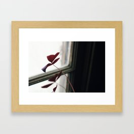 Toward the Sun. Framed Art Print