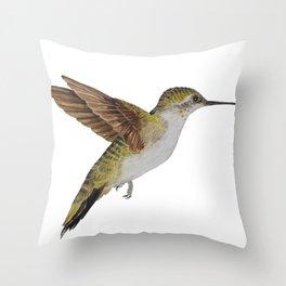 Hummingbird Watercolour Throw Pillow