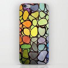 Rainbow Stones iPhone & iPod Skin