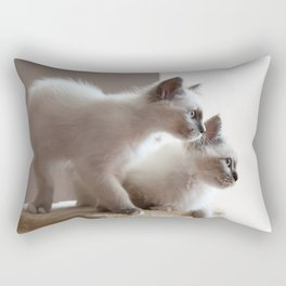 Portrait of two white long hair birman cats with blue eyes. Rectangular Pillow