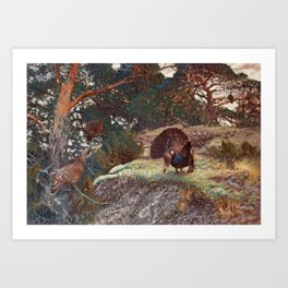 BRUNO LILJEFORS, CAPERCAILLIE S COURTING. Art Print