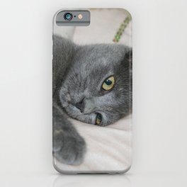 Russian Blue Kitten Relaxed On A Bed iPhone Case