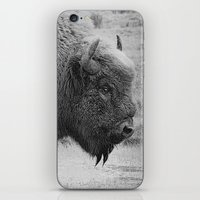 bison iPhone & iPod Skins featuring  Bison by Peaky40