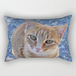 give me a little love Rectangular Pillow
