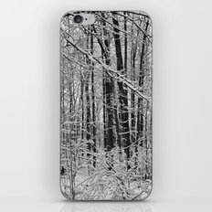 Snow Forest iPhone & iPod Skin