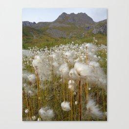 Windy Meadow Canvas Print