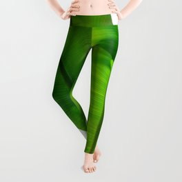 TROPICAL GREEN Leggings