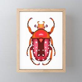 Orange and Red Beetle Framed Mini Art Print