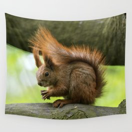 Red squirrel eating nuts Wall Tapestry
