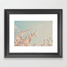 spring is in bloom ...  Framed Art Print
