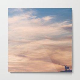 Clouds and Toro Metal Print
