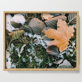 Autumn leaves in winter Serving Tray