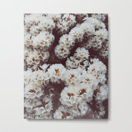 Rhododendrons II Metal Print