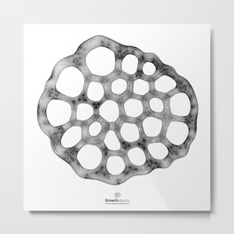 GEOMETRIC NATURE: LILY SEED w/b Metal Print