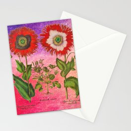 Vintage Botanical Collage - Poppies, Papaver Somniferum Stationery Cards