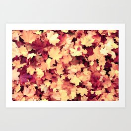 The Elegance of Autumn Foliage Art Print