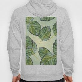 Apple Leaf Pattern Hoody