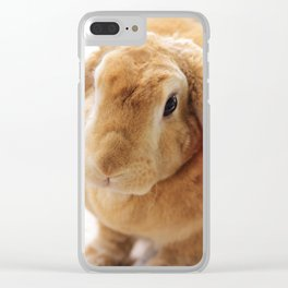 The Velveteen Rabbit Clear iPhone Case