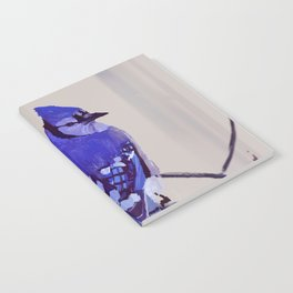 Blue Jay Bird Notebook