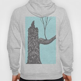 Nut Tree Illustration Hoody