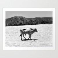 In the Desert Art Print